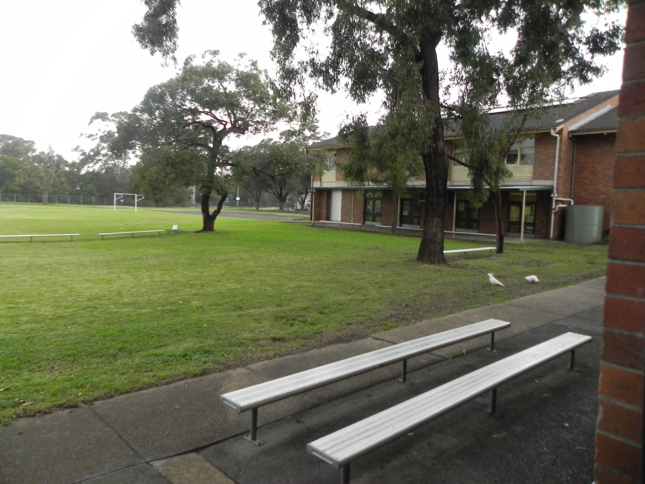 Outside view of the school field.